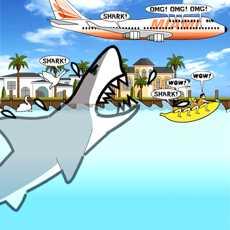 迈阿密鲨鱼