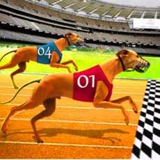 狗种族灵狮3D-狗赛车游戏-宠物秀