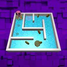 3D:Maze&Robot
