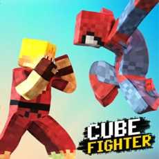 CubeFighter3D