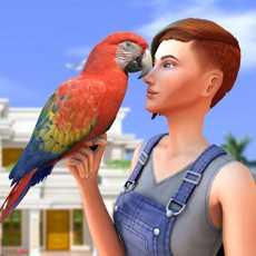 家鹦鹉sim卡宠物世界游戏